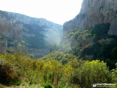 Selva Irati-Pirineo Navarro-Puente del Pilar; consejos senderismo para principiantes equipación par